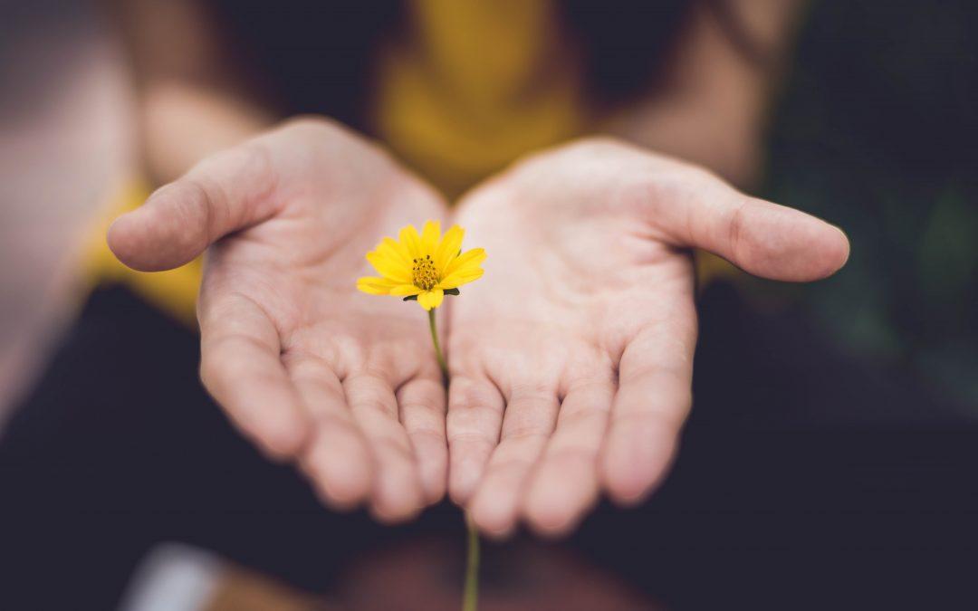 Elina Porokka - Työhyvinvointia, hengähdyshetkiä & voimavaroja